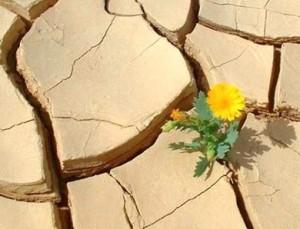 resilienza1
