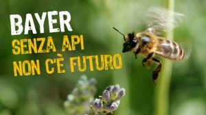 bayer-senza-api-non-c-e-futuro