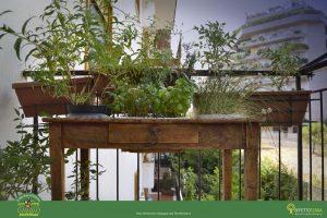 Orto+sul+balcone+Francy_23